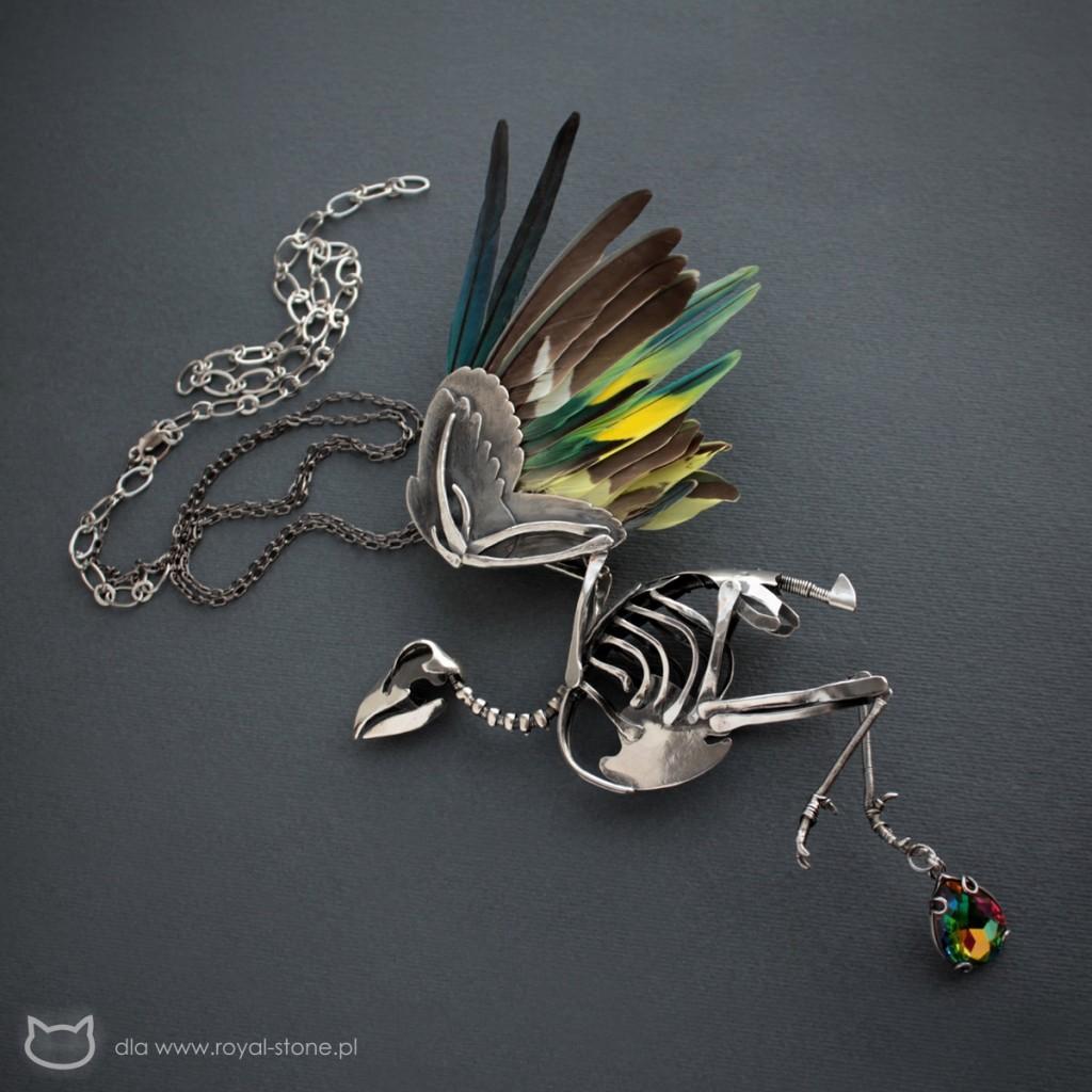 11_ptakor