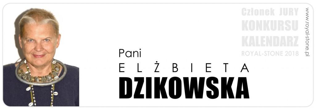 Jury_konkurs_biżuteryjny_2018_Elżbieta_Dzikowska_biżuteria