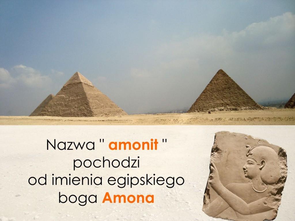 Royal-Stone Pochodzenie nazwy amonitów