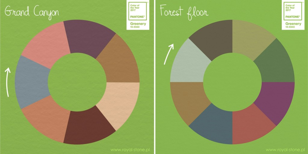 Pantone_2017_02_grand_canyon_forest_floor